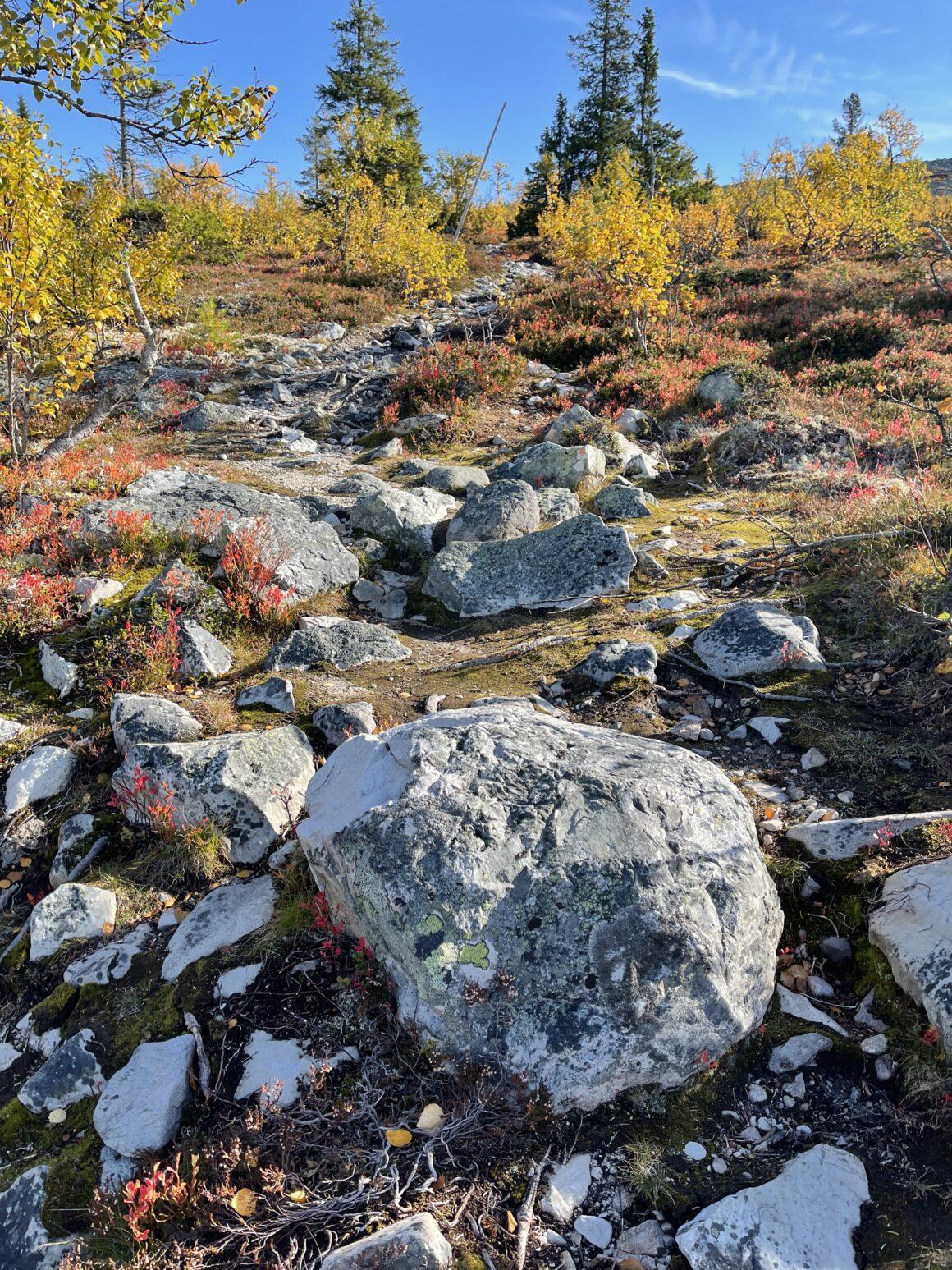 Stenig led på väg upp på fjället i Vemdalen
