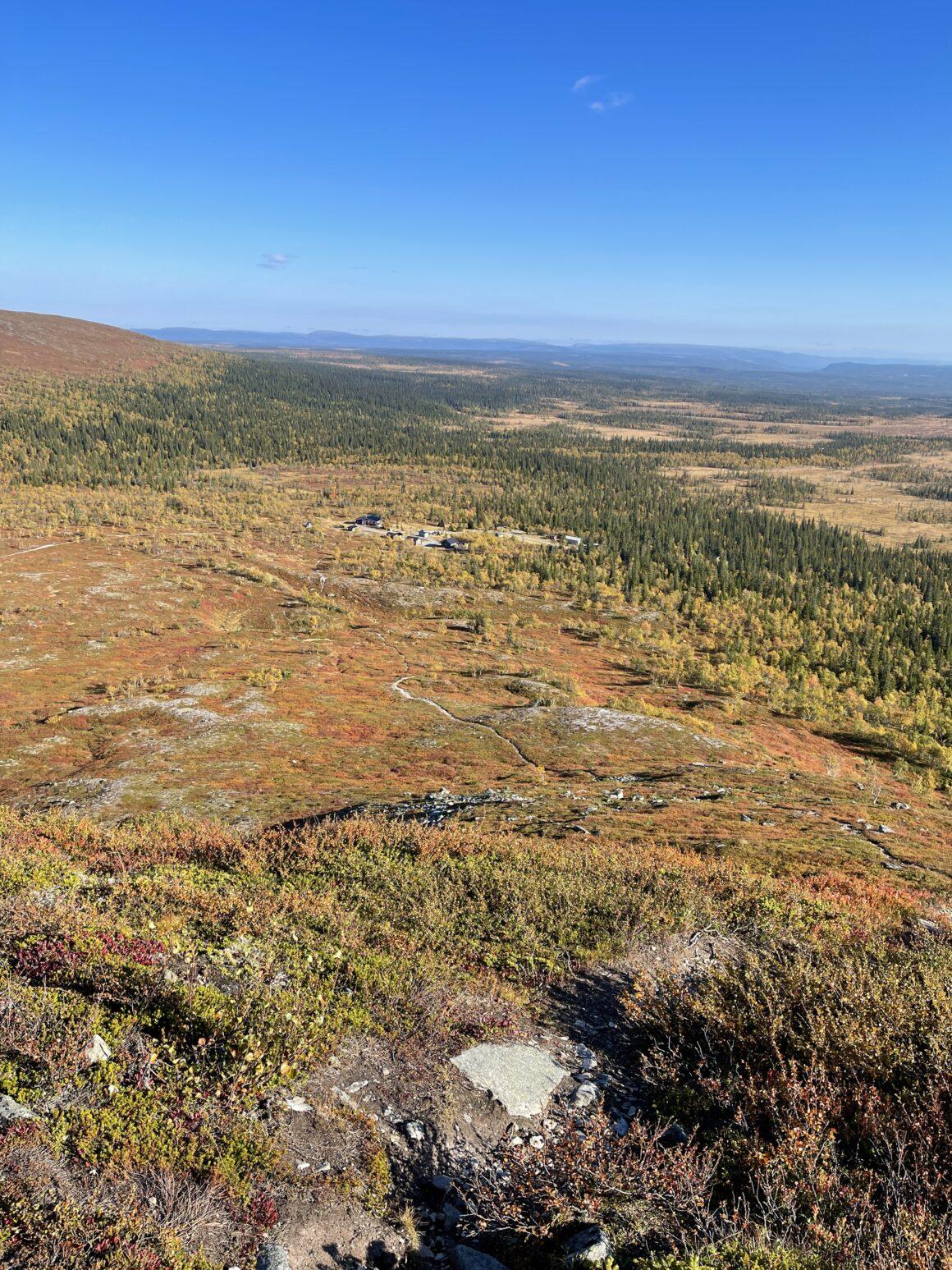 Utsikt från toppen där man ser vandringsstigen ner mot restaurang Fjällorren vid Särvfjället, Härjedalen.